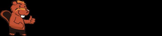 Informatik Biber Schweiz
